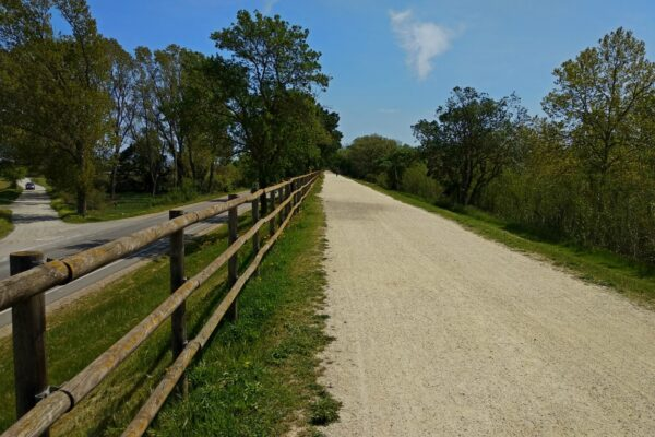 Restoration of the natural path of the Muga River